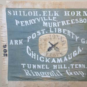 8th and 19th Infantry Regiment Flag