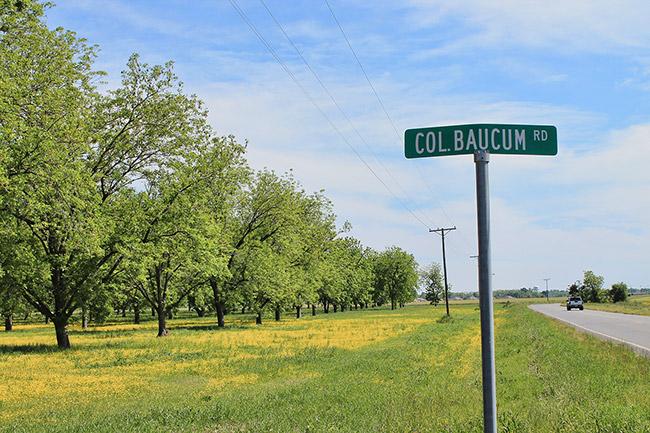 Col. Baucum Road