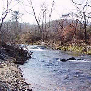 Big Fork Creek