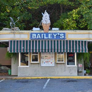 Bailey's Dairy Treat