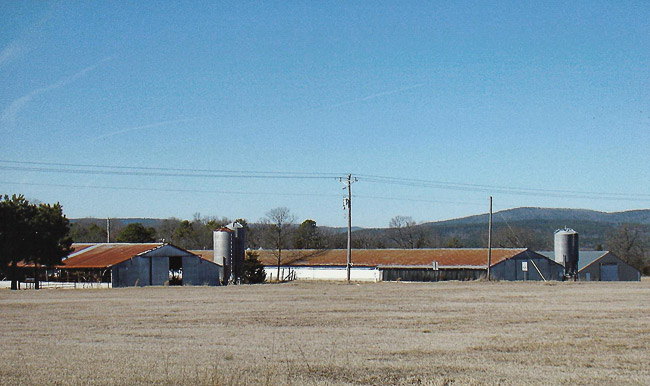 Cleveland Poultry Farm
