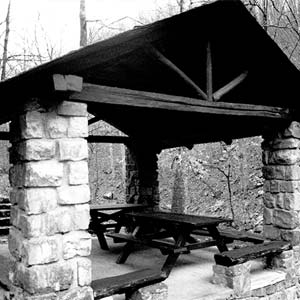 Collier Springs Shelter