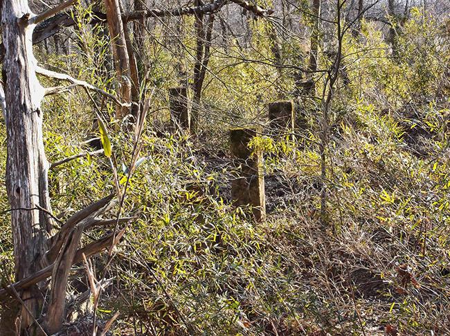 Curia Creek Bridge