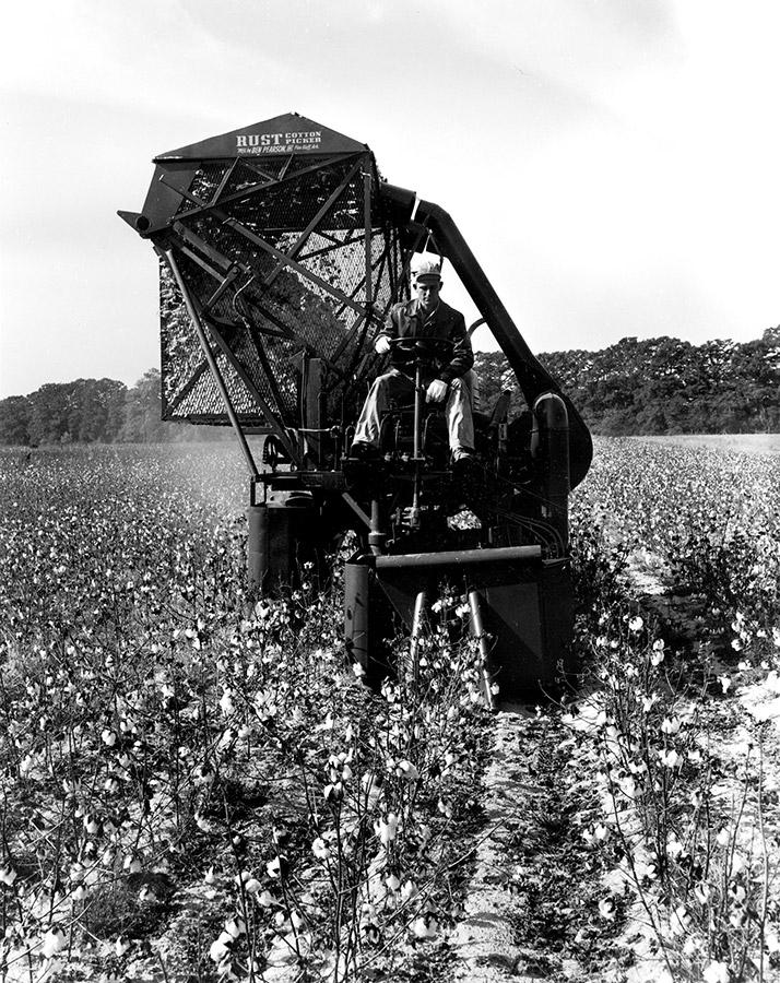 Dortch Plantation Cotton Picker