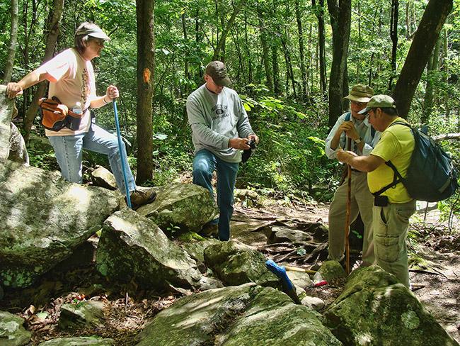 Arkansas Native Plant Society Field Trip--Petit Jean