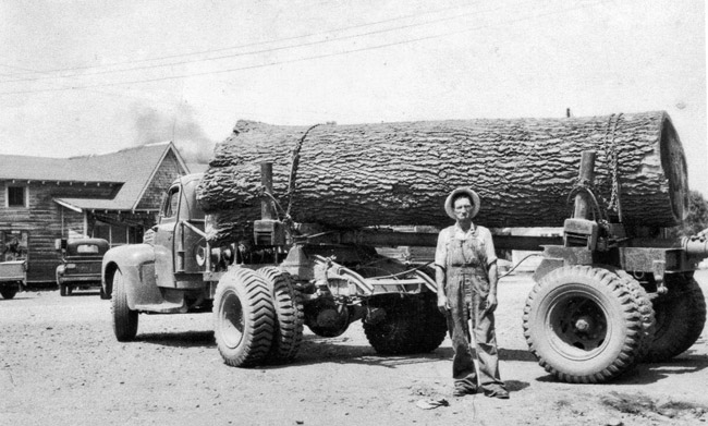 Logging at Forester