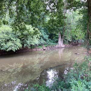 Fourche Creek