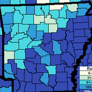 Gonorrhea in Arkansas