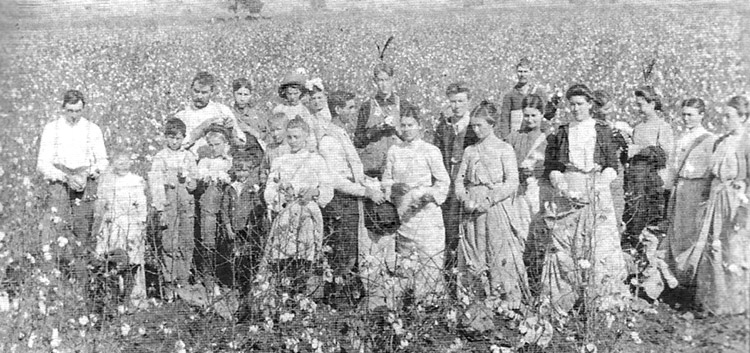 Greenbrier Bottoms Cotton Pickers