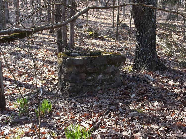 Hazel Grove Site