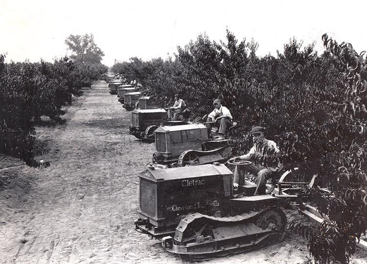 Bert Johnson Orchards