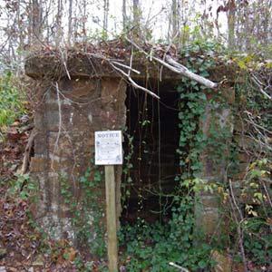 Lost Corner Cellar