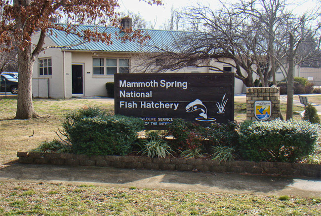 Mammoth Spring National Fish Hatchery
