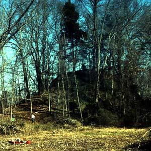 Primary Mound
