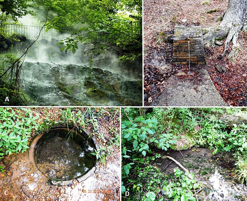 Various Ouachitas Springs