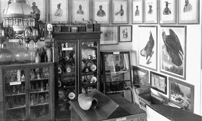 Penrod's Museum