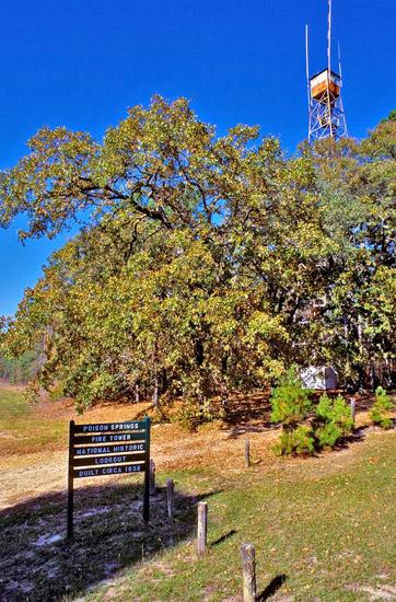 Poison Spring State Park: Observation Tower