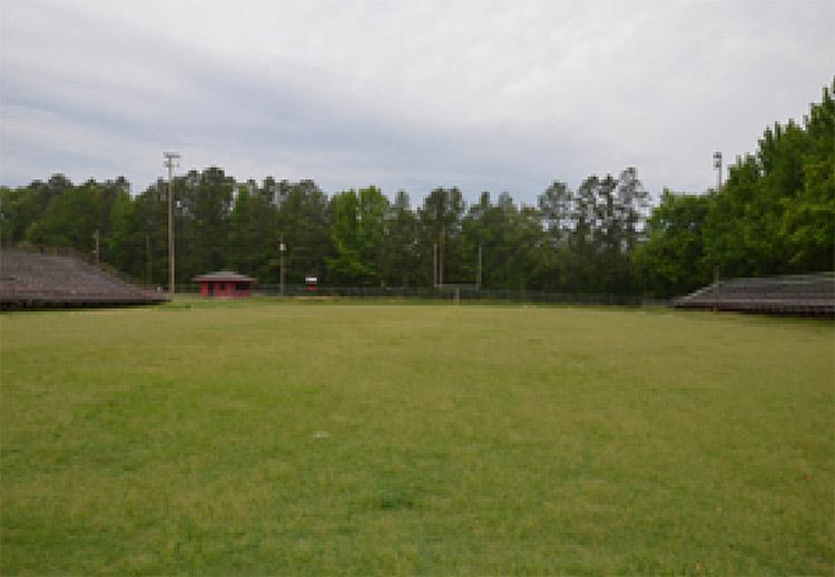 Redbug Field