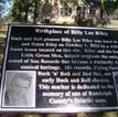 Billy Lee Riley Memorial
