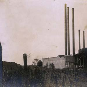 Southern Cotton Oil Mill Strike