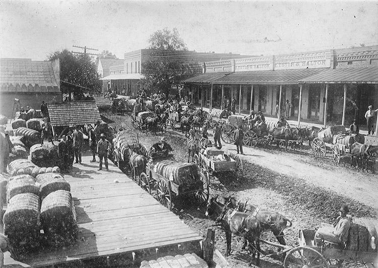 Cotton Wagons: Stephens