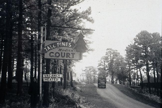 Tall Pines Motor Inn