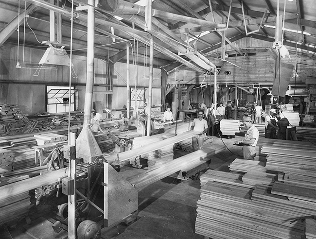Turney Plant Workers