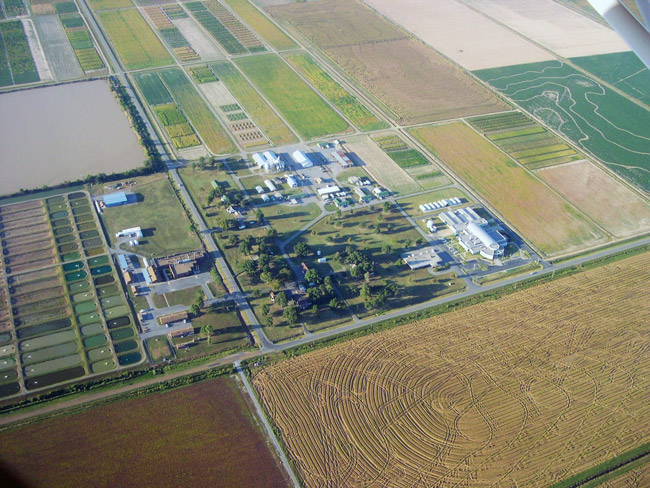 University of Arkansas Rice Research and Extension Center