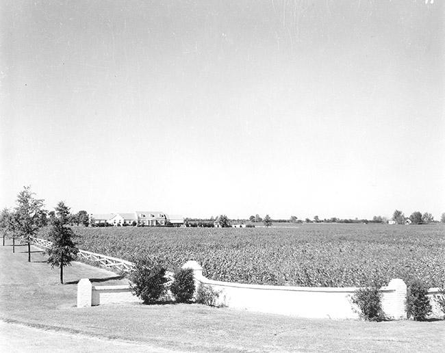 Wilson Plantation