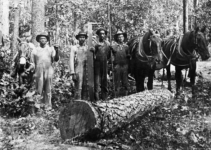 Cleveland County: Lumber Industry