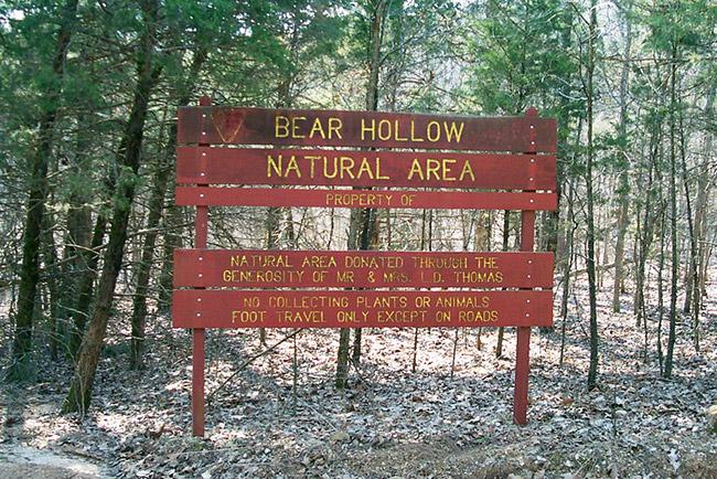 Bear Hollow Natural Area