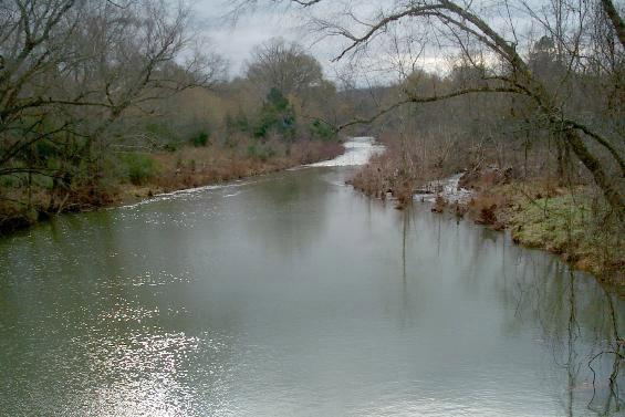 Cove Creek Natural Area