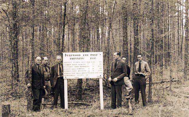 Crossett Experimental Forest