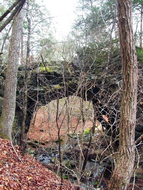 Dolph: Natural Bridge