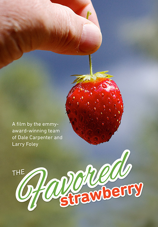 The Favored Strawberry