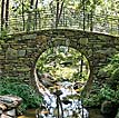 Garvan Woodland Gardens Bridge