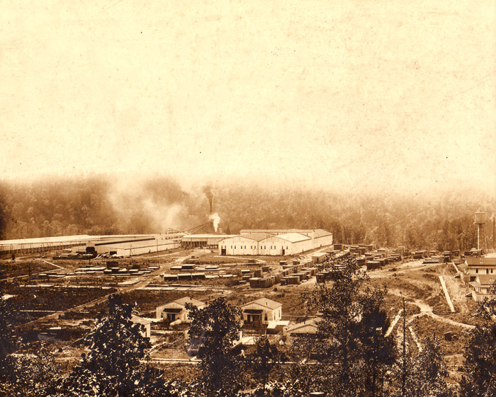 Graysonia: Timber Mill