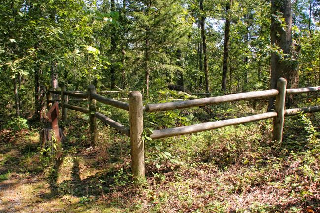 Cadron Settlement: Harris Family Gravesite
