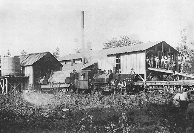 Kiech Sawmill