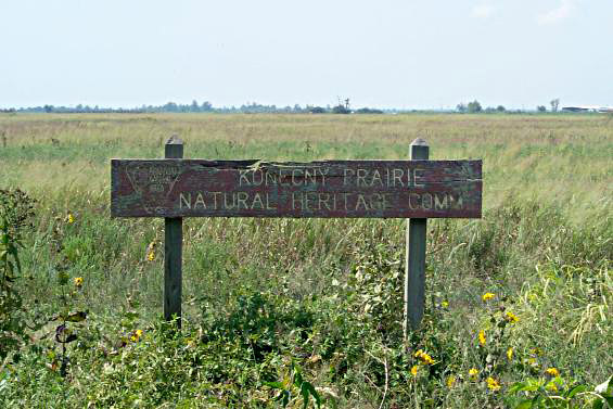 Konecny Prairie Natural Area