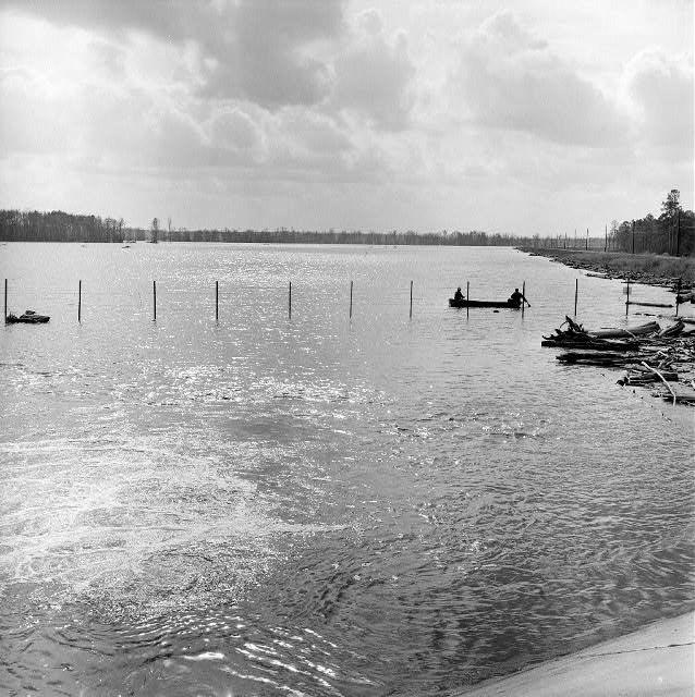 Lake Georgia Pacific