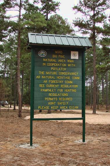 Moro Big Pine Natural Area
