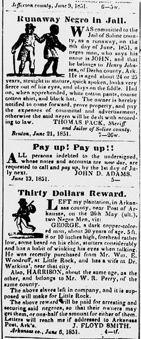 Runaway Slave Article