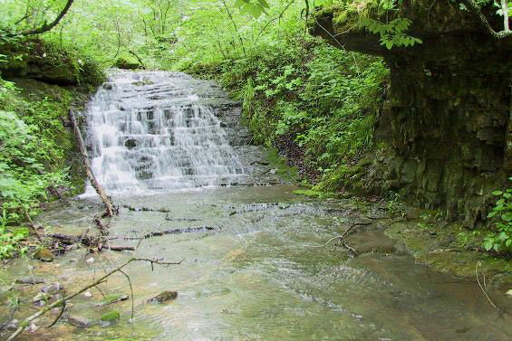 Slippery Hollow Natural Area