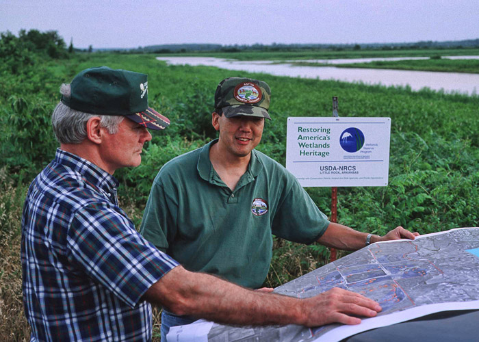 Wetland Planning