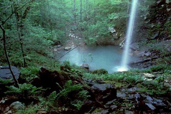 Sweden Creek Falls Natural Area