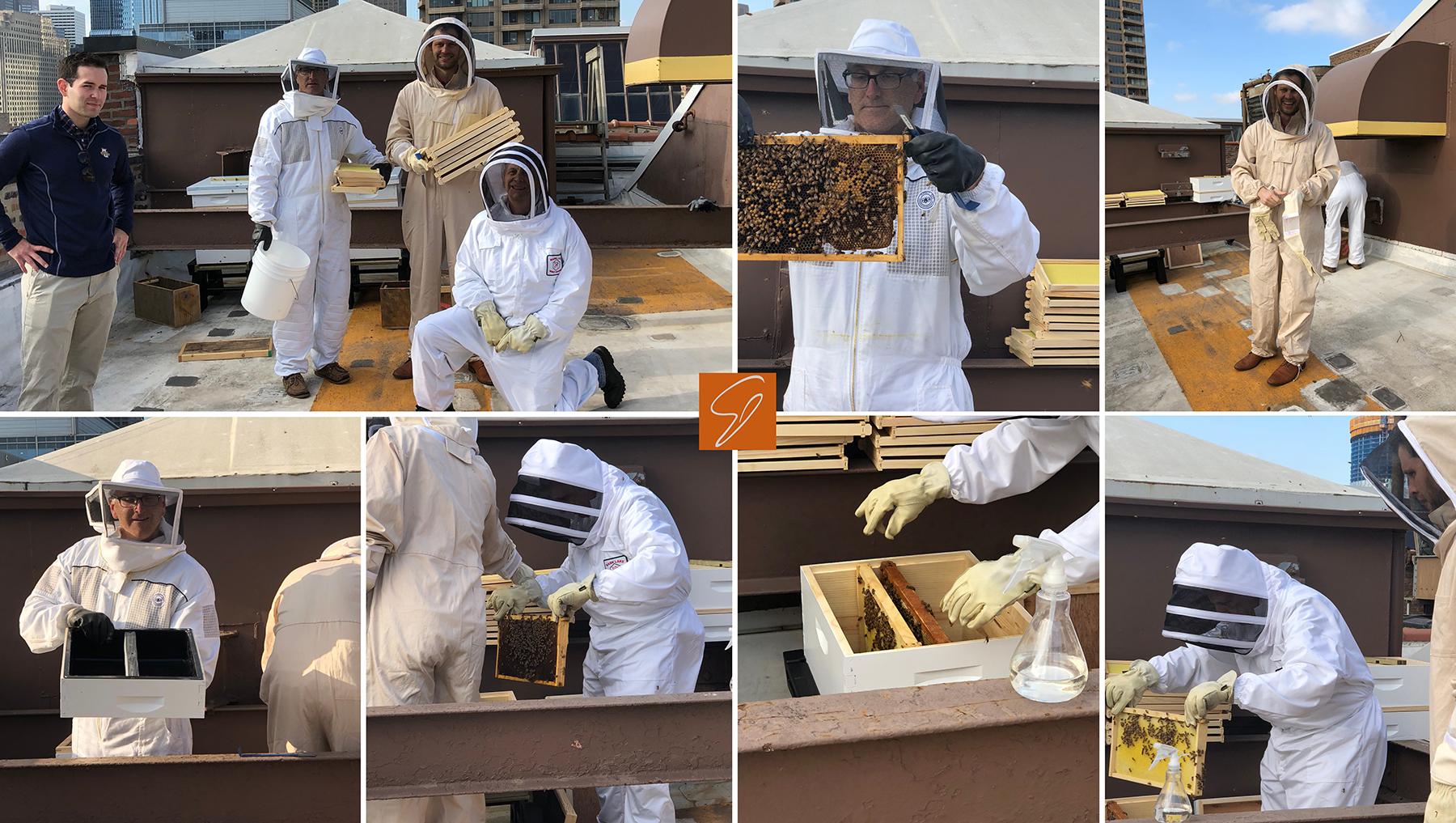 BeekeepingCollage.jpg?mtime=201805141028
