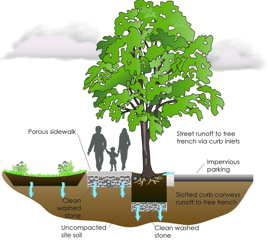 What Is Green Infrastructure Epstein