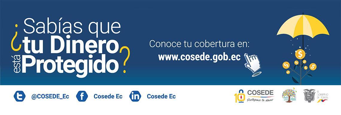 COSEDE WEB