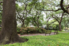 Retire in Savannah